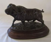Limited edition bronze of a water buffalo by Kim Brookes signed and dated 1992 no 4/25 L 28 cm H