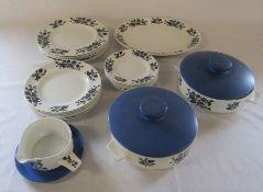 Midwinter alpine blue pattern part dinner service