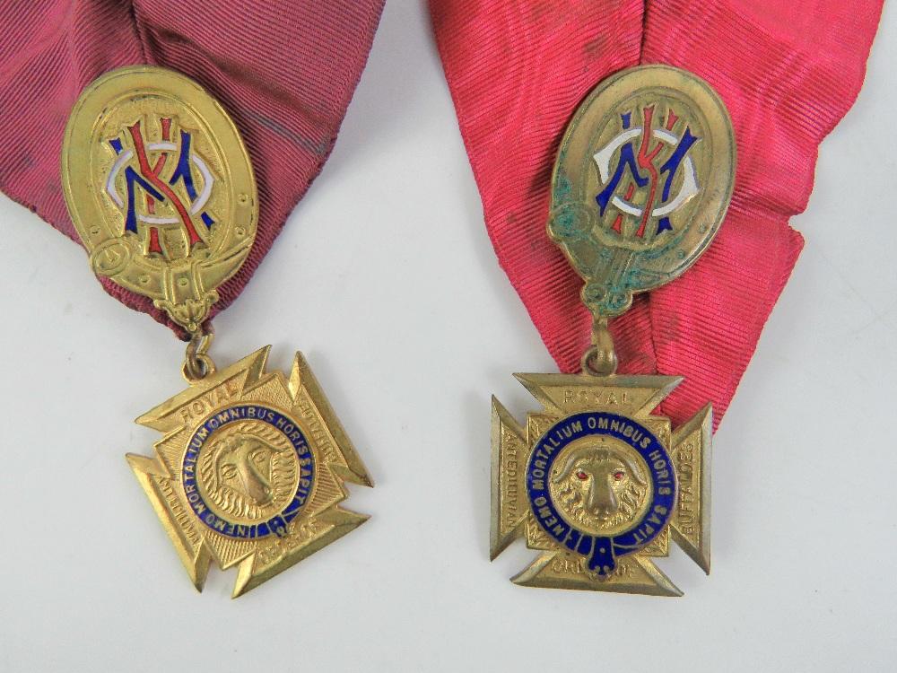 Lot 26 - The Royal Antediluvian Order of Buffaloe