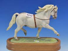 A 1966 ROYAL WORCESTER FIGURE OF THE WELSH MOUNTAIN PONY COED COCH PLANED MODELLED BY DORIS LINDNER.