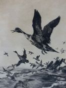 WINIFRED AUSTEN (1876-1964). ARR. TAKING FLIGHT, PENCIL SIGNED ETCHING 24 x 19.5cms.
