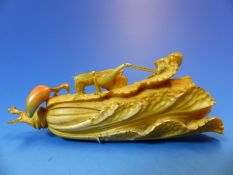 A JAPANESE TINTED IVORY CARVING OF A GRASS HOPPER ON A PAKCHOI WITH A CHILLI BY ITS STEM. W 11cms.