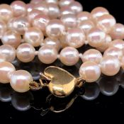 A CULTURED PEARL NECKLET COMPLETE WITH AN 18ct GOLD HEART SHAPE CLASP. UNIFORM, KNOTTED ROW.