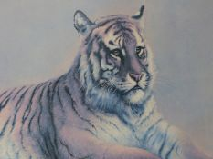 SPENCER ROBERTS (1920-1997). ARR. RED TIGER. PENCIL SIGNED LIMITED EDITION COLOUR PRINT. 55 x 76cms.