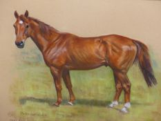 """MARY BROWNING (20th/21st.C.). ARR. TWO HORSE PORTRAITS, BOTH OF """"BANBRIDGE"""". PASTEL, SIGNED. SIZE OF"""