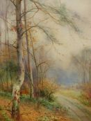 THOMAS TAYLER IRELAND (1894-1921). TWO WOODLANDS VIEWS. SIGNED WATERCOLOURS. 51 x 34cms (2).