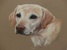 MARY BROWNING (20th/21st.C.). ARR. TWO PORTRAITS, A LABRADOR AND A RETRIEVER. PASTEL, SIGNED.