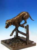 SALLY ARNUP (1930-2015). ARR. FOXHOUND LEAPING FENCE. SIGNED LIMITED EDITION BRONZE, 10/10. H.
