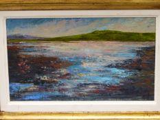 CLOE CLOHERTY (b. 1964). ARR. A CONNEMARA LANDSCAPE. OIL ON BOARD, SIGNED. 18 x 28cms.