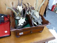 A CUTLERY TRAY, DECORATIVE STAG FRONTLETS ETC.