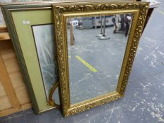 TWO GILT FRAMED MIRRORS AND A PRINT OF A TIGER.