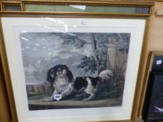 ENGRAVING OF A SPANIEL AND TWO FURTHER PRINTS.