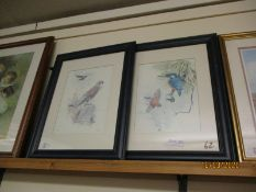 TWO EBONISED FRAMED PRINTS OF A HAWK AND KINGFISHERS (2)