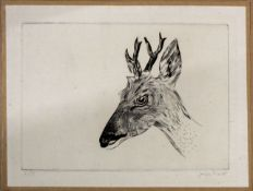 •AR Joseph Hecht (1891-1951), Deer head, black and white etching, signed lower right and numbered