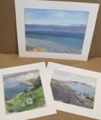 A N Buchanan (20th century), Coastal scenes, group of 3 oils on canvas/board, all inscribed verso