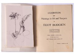 Attributed to Eliot Hodgkin (1905-1987), Botanical study, pencil drawing, 18 x 11cm unframed