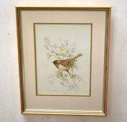 Andrew Osborne (20th century), Bird studies, group of three watercolours, all signed, 27 x 30cm (3)