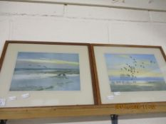 PAIR OF FRAMED WATERCOLOURS DEPICTING BIRDS IN FLIGHT, EACH APPROX 18 X 26CM