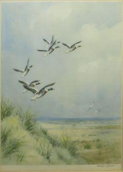 Sporting & Ornithology Sale