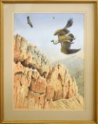 "AR John Tennent (Born 1926), ""Vultures in Crete"", watercolour, signed lower left, 55 x 40cm"
