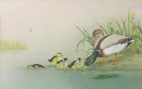 J A Morris (20th century), Mallard with young, watercolour and gouache, signed and dated 86 lower