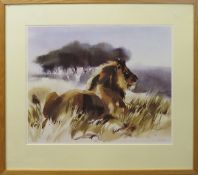Wolfgang Weber (contemporary), Lion in a landscape, coloured print, signed, numbered 49/495 in