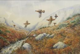 Simon Trinder (born 1958), Grouse in flight over moorland, watercolour, signed lower left, 25 x