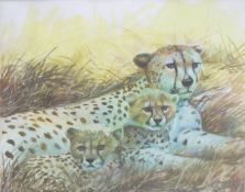 Clifford Charles Turner (1920-2018), Cheetah and cubs, watercolour, signed lower right, 21 x 26cm