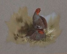 AR Brian Reed (born 1934), English Partridge, watercolour, signed lower left, 16 x 20cms