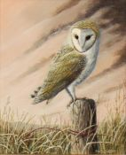 """Mark Chester (contemporary), """"Evening Lookout - Barn Owl"""", 24 x 19cm"""