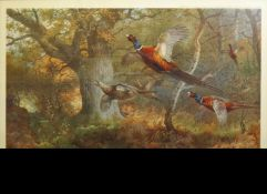 Archibald Thorburn (1860-1935), Bird studies, set of four coloured artists proofs, all signed in