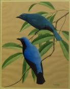 Porfirio Castaneda (20th century), Phillippine birds, pair of watercolours, both signed, both approx