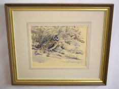 •AR Frederick J Watson (20th Century), Little Owl in Landscape, watercolour, signed and dated 1985