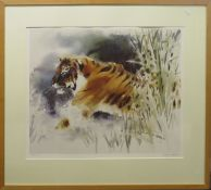 Wolfgang Weber (contemporary), Tiger, coloured print, signed and numbered 597/750 in pencil to