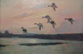 Wilfred Bailey (19th/20th century), Geese alighting, oil on canvas, signed lower right, 50 x 75cm