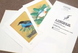 Porfirio Castaneda (20th century), - a portfolio of Phillippine birds, a publication of Filipinas