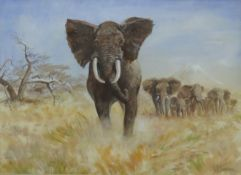 Clifford Charles Turner (1920-2018), Elephants, watercolour, signed lower right, 53 x 72cm