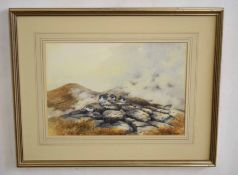•AR Berrisford Hill (20th Century), Ptarmigan on the Moors, watercolour, signed lower right, 25 x