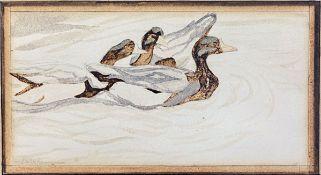 English School, (19th Century), Ducks, watercolour, 10 x 19cm