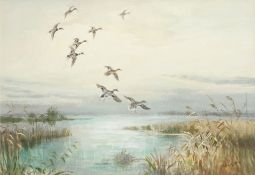 •AR Roland Green (1890-1972), Mallard alighting, watercolour, signed lower right, 33 x 48cm