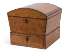 Unusual 19th century birds eye maple veneered domed top rectangular jewel box with parquetry inlays,