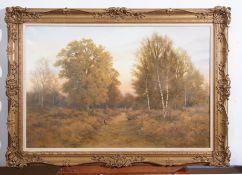 """AR Colin W Burns (born 1944), """"Woodland rise - Horsford"""", oil on canvas, signed lower right"""