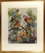 Robert Kilpatrick, Parrots, watercolour, signed lower left, 45 x 37cm