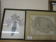 MAP OF NORFOLK AND BOTANICAL FLORAL PRINT