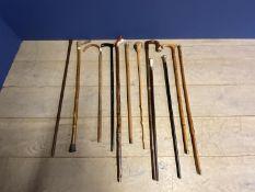 Qty of various walking sticks, canes, shepherds crooks