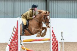Topthorn Arena, Suffolk – Yours for the Day Topthorn Arena equestrian centre near Stonham Aspal,