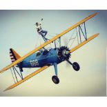 Wing Walk Experience - Essex Come and enjoy the ultimate experience for hardened thrill seekers!