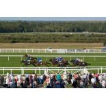 2 Tickets for an Ascot Race Day in 2021 including Afternoon Tea in The Queen Anne Enclosure Within