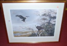 Phil Capen (b.1940) - American Bald Eagle, limited edition colour print numbered 371/950, signed