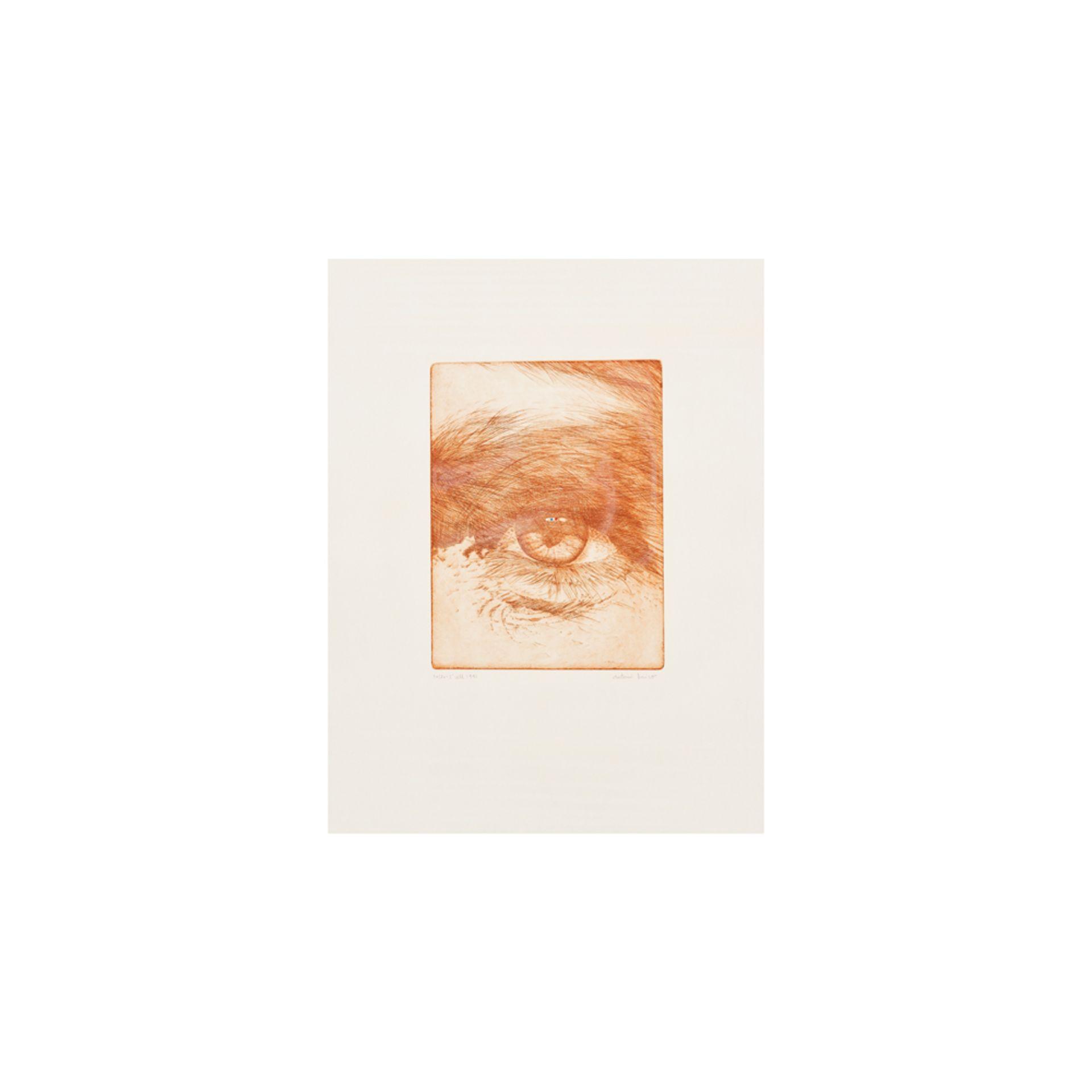 Antonio Miró. L'ull. Grabado.